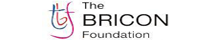 The BRICON Foundation
