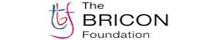 The BRICON Foundation
